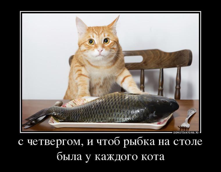 674939_s-chetvergom-i-chtob-ryibka-na-stole-byila-u-kazhdogo-kota_demotivators_to
