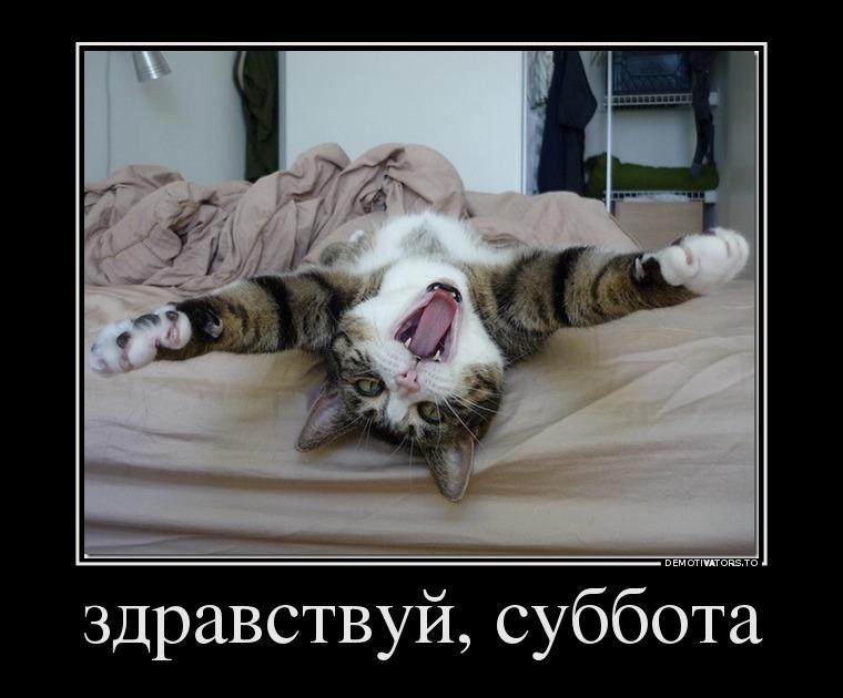 738673_zdravstvuj-subbota_demotivators_to