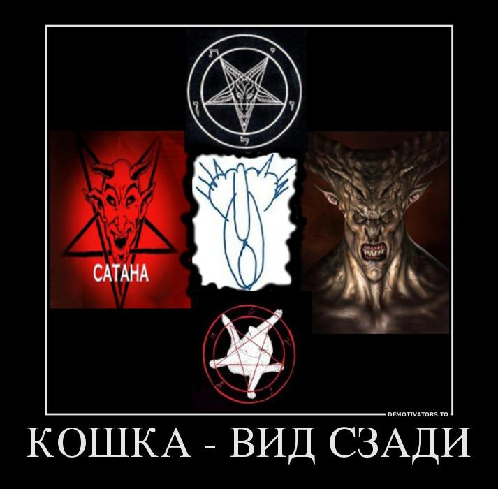 108432_koshka-vid-szadi_demotivators_ru