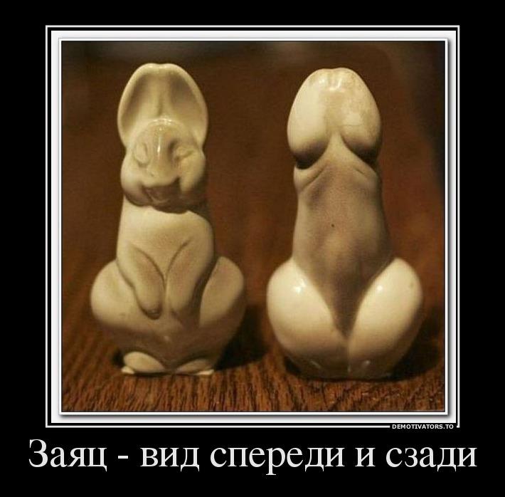 108211_zayats-vid-speredi-i-szadi_demotivators_ru