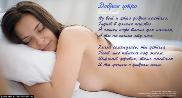 SHE0533