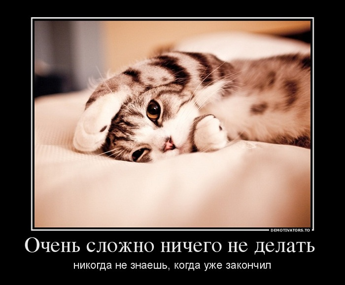O.CH 6.10.12  Очень сложно ничего не делать...