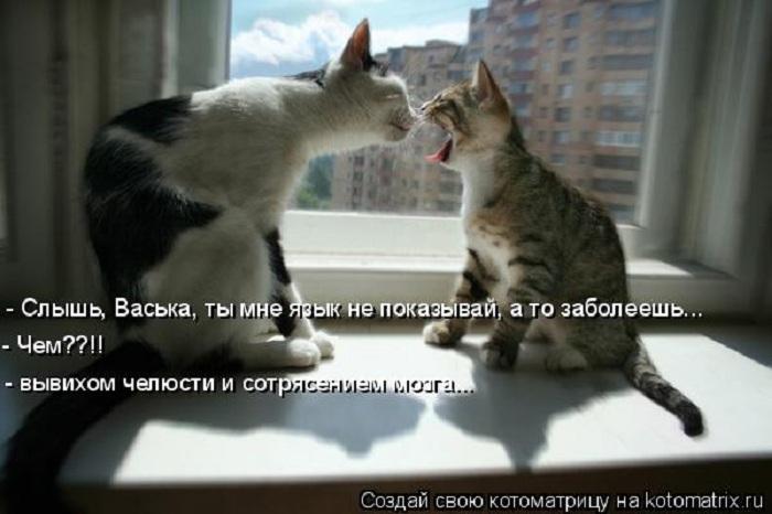 Ты мне язык не показывай