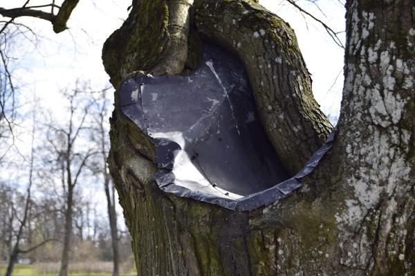 cs_tree