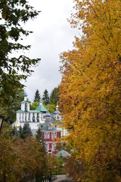 mon_autumn