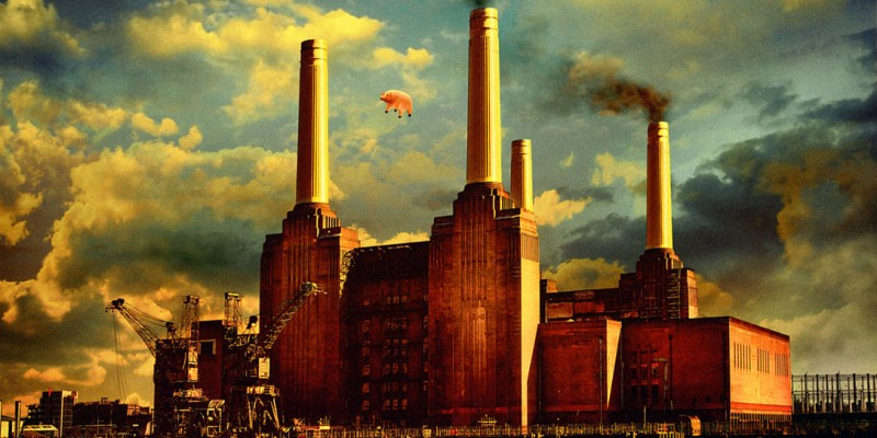 Pink Floyd, Animals, 1977 г.