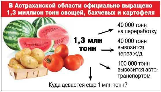 инфографика 3(1)