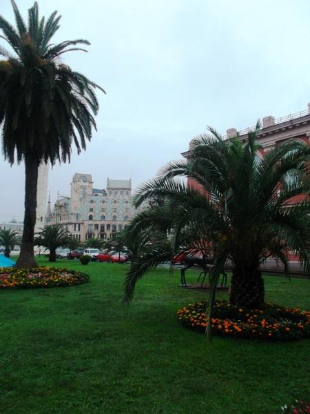 09 пальмы
