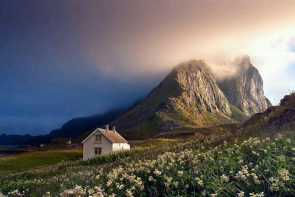 Дом. Цветы. Горы. Туман