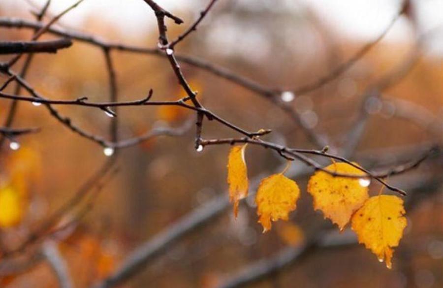 Осень3