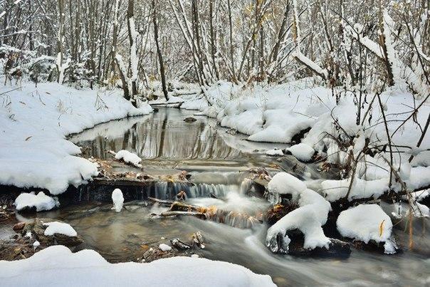 Замерзший ручей...