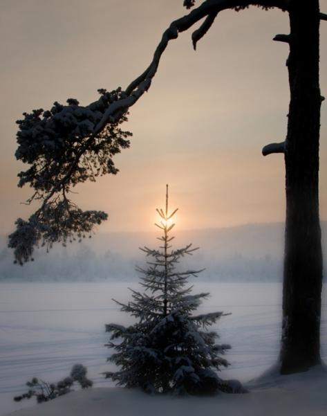 Морозный закат (зима)