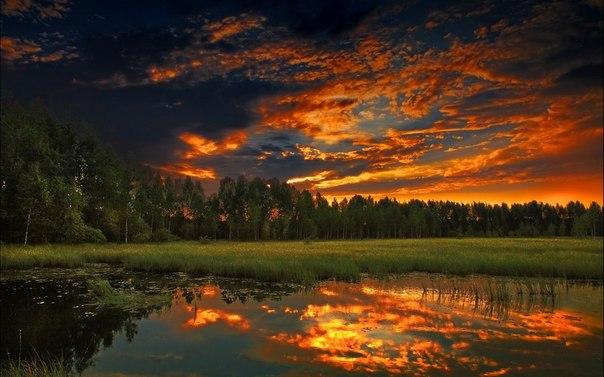 Луг. Озеро. Свет