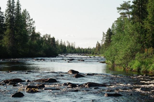 шиверы реки Большая