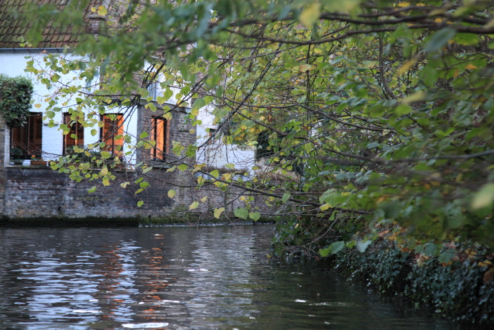 12NOV_Brugge-1031