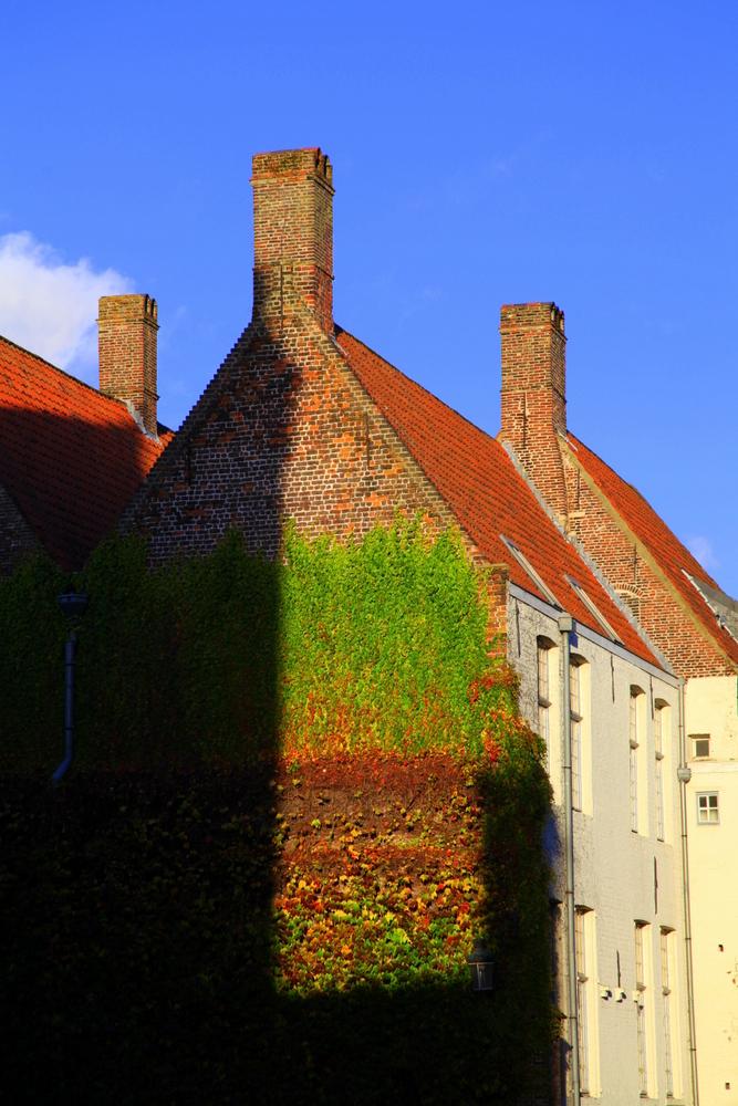 12NOV_Brugge-4761