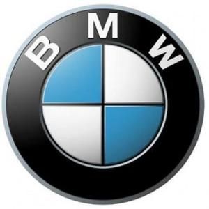 BMW_logo-470x470