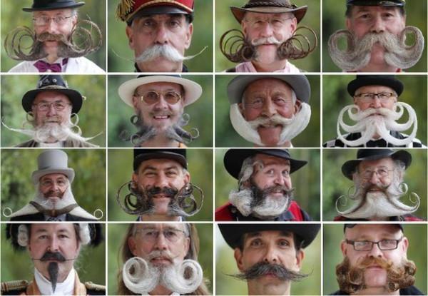 Конкурс усов и бород во Франции.