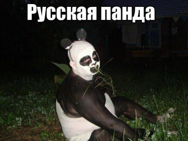 1010451_154733354712459_707823297_n