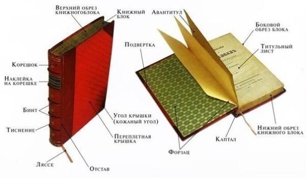 А вы знаете, как называются составные части книги?