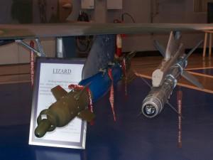 Lizard_06_F-5EM.jpg