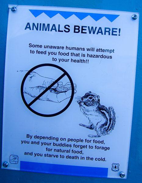 animalsbeware