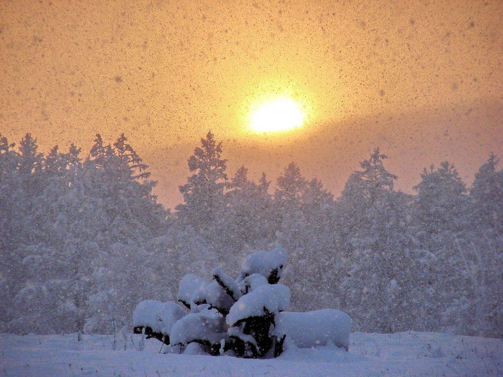 снежная сказка 087