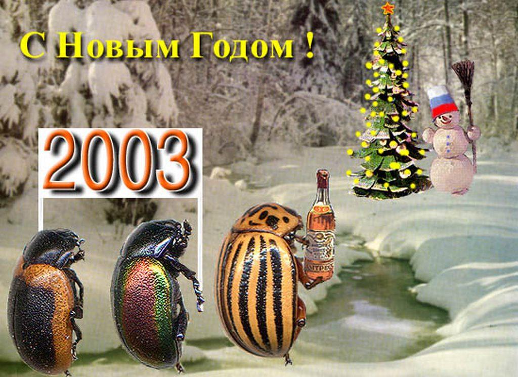 ber_2003