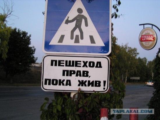 Пешеход прав, пока жив!