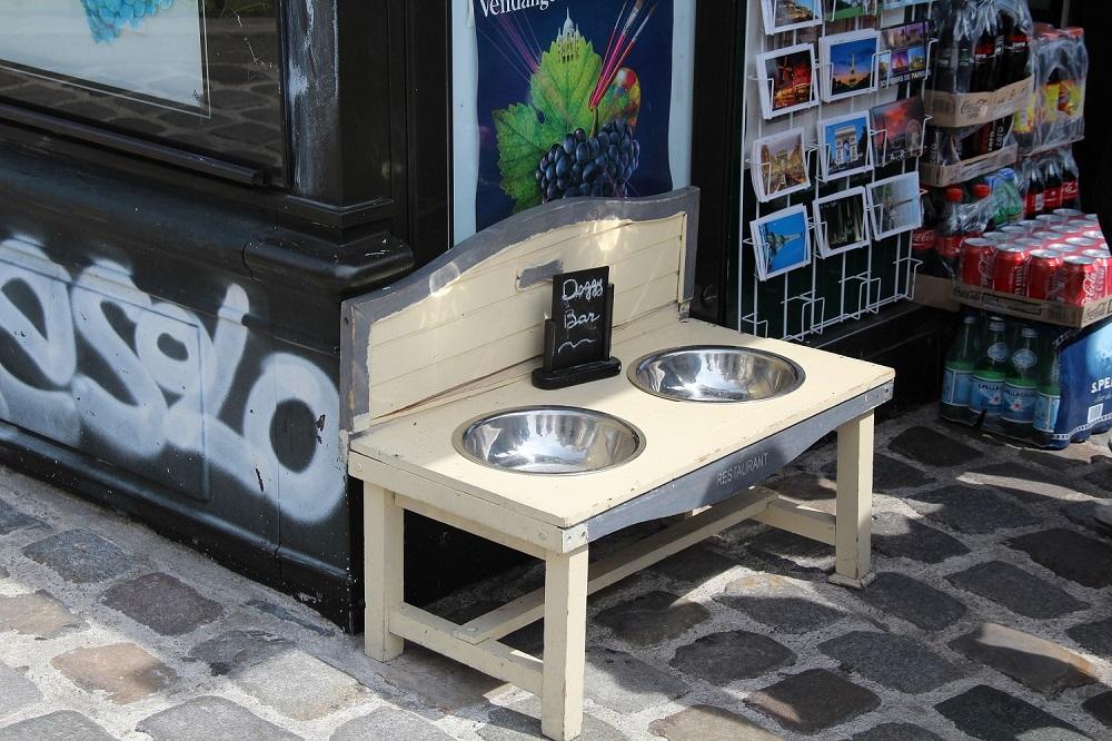 Собачий бар 1