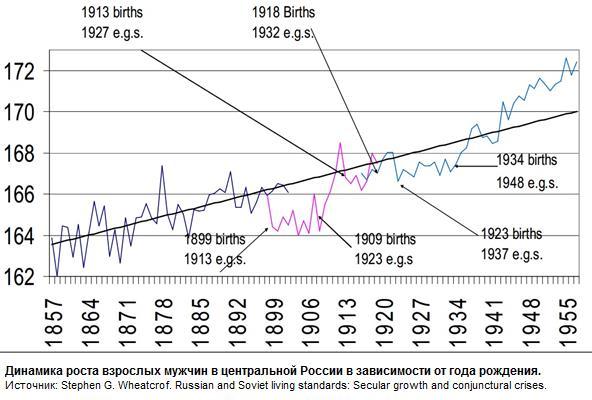 Почему голландцы самые высокие в мире, средний рост в России и провал ЗОЖа в