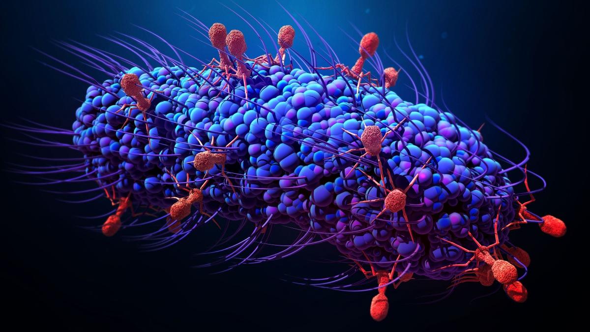 Чем опасен китайский коронавирус