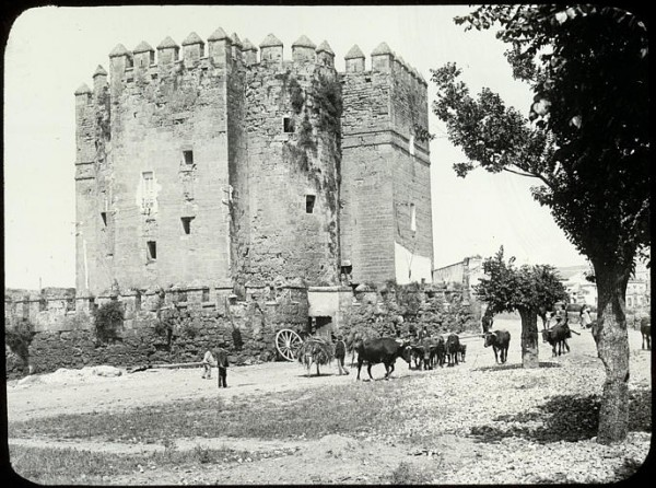 Torre_de_la_Calahorra_-_Marie-Joseph_Henry_de_Lestrange_(1853-1926).jpg