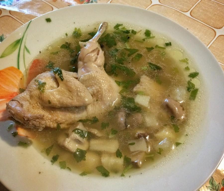 суп из перепелов рецепт с фото можно