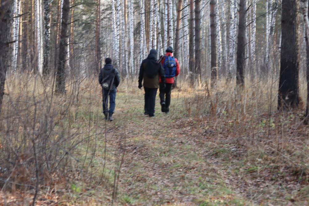 Неторопливо гуляем по лесу