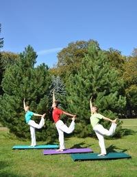 каникулы йоги