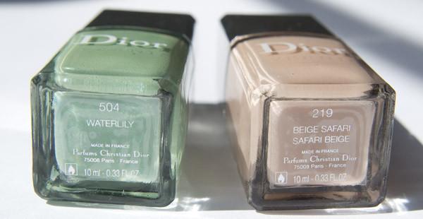 Dior_1