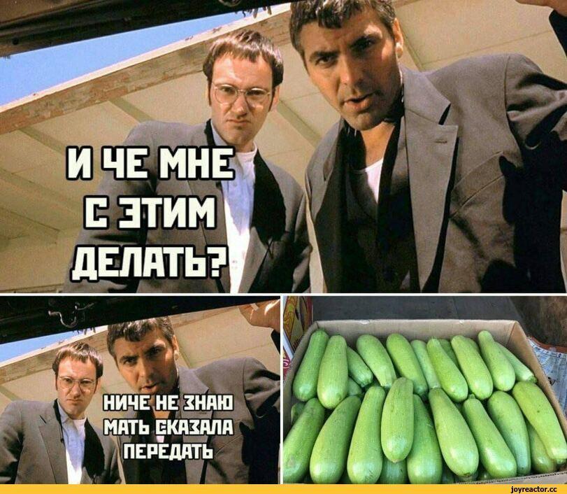 Фотки мне злодейски шлет одна Саньчоус)))