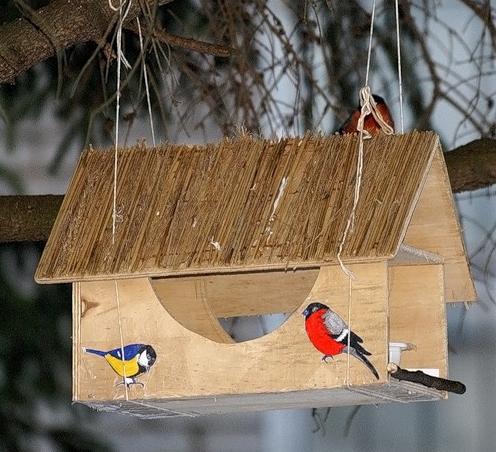 Как быстро сделать кормушку для птиц своими