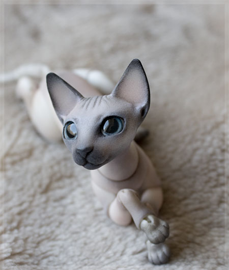 cat_sphinx_color_0000__