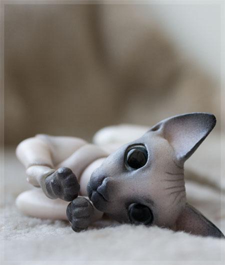cat_sphinx_color_0007__