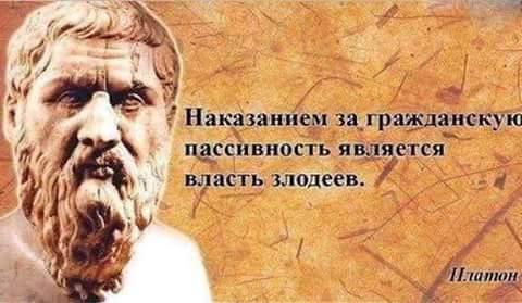 цитата.15