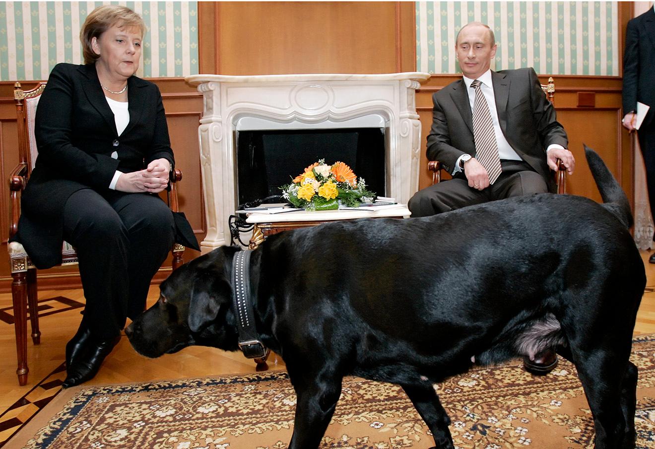 Путин.Меркель.0