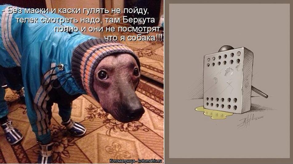 украина-юмор1