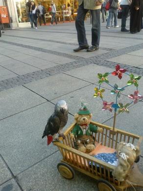 Попугай1и2