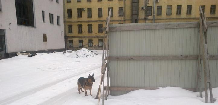 Прогулка