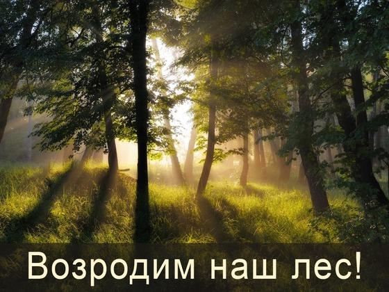 full_photo