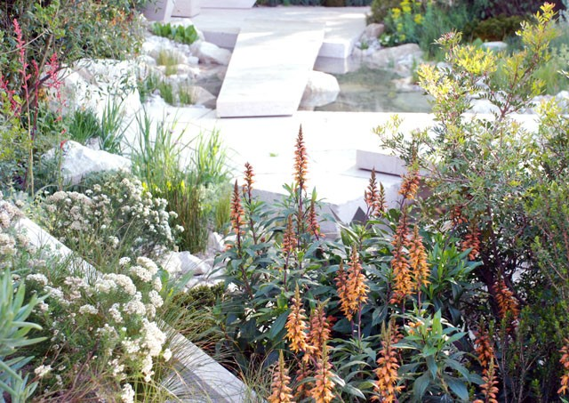 The-Telegraph-Garden-RHS-Chelsea-2016-Lisa-Cox
