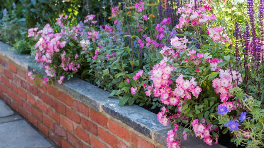 Harrods-British-Eccentrics-Garden-05_1088x612