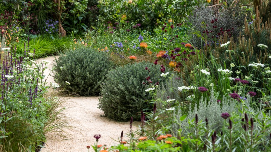 Winton-Beauty-of-Mathematics-Garden_1088x612_V0P0301